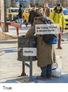me-trying-to-find-a-decent-movie-netflix-true-40196811
